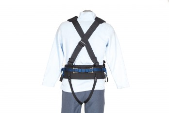 Back view of the Full Harness