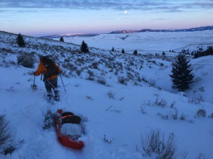 Hunting Pulk Sled_1